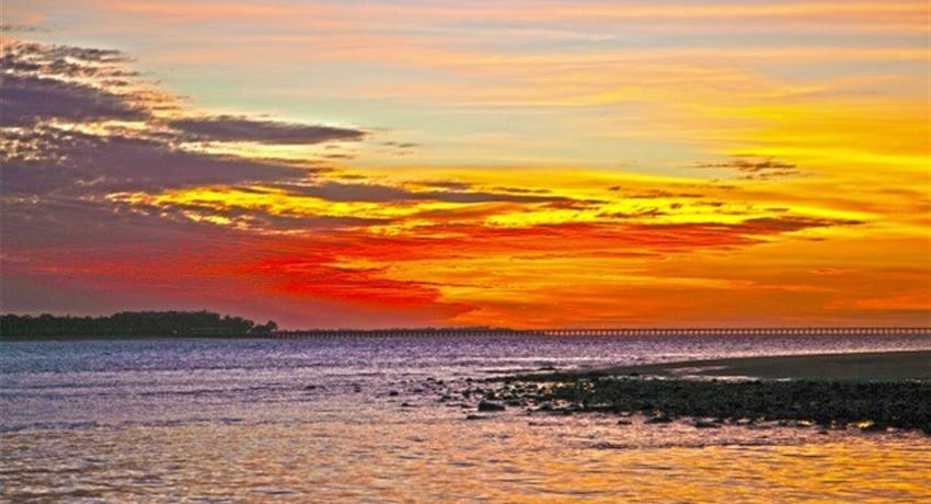 sunset tiqy, Milbi Sunset