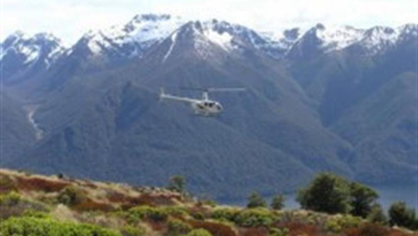 heli, Milford Sound Day Tour