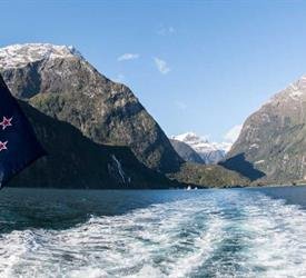 Milford Sound Early Bird