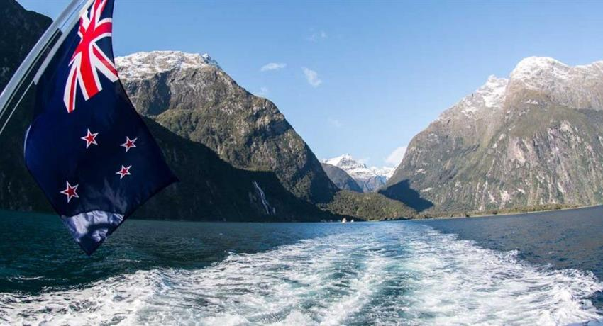 view tiqy, Milford Sound Early Bird
