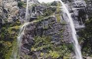 waterfall tiqy, Milford Sound Vuelo de Regreso Tour