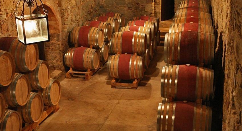Wine Cellar, Montserrat Tapas and Wine