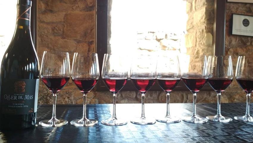 red wine, Tapas y Vino en Montserrat