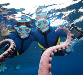 Morning Snorkel to Molokini, Water Activities in United States