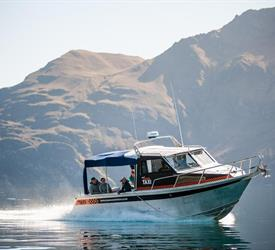 Mou Waho Island Tour, Boat Tours in New Zealand