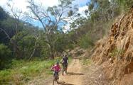 Mount Lofty Downhill Bike trip rockstreet, Mount Lofty Downhill Bike Trip