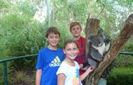 Mount Lofty Downhill Bike trip Koalas and Kids, Mount Lofty Downhill Bike Trip