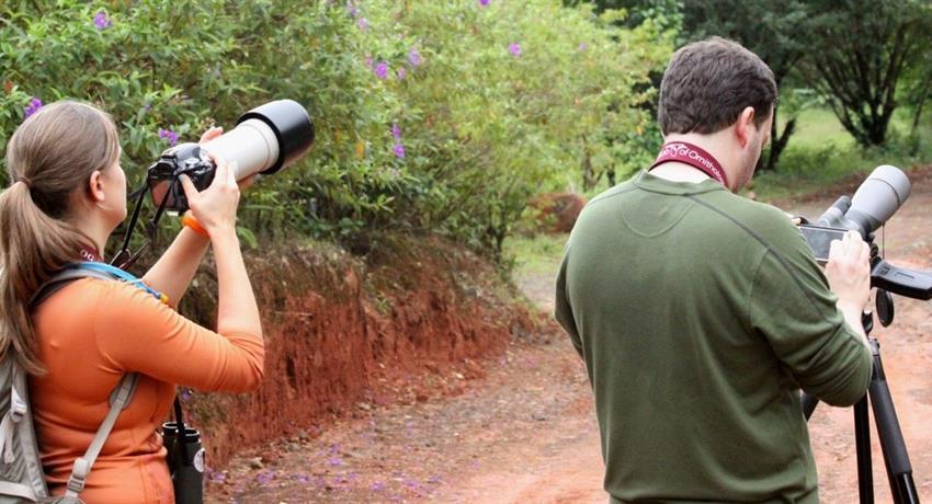 Humans, National Parks Birdwatching Tour