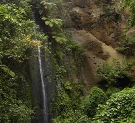 Chocoyero National Reserve Tour
