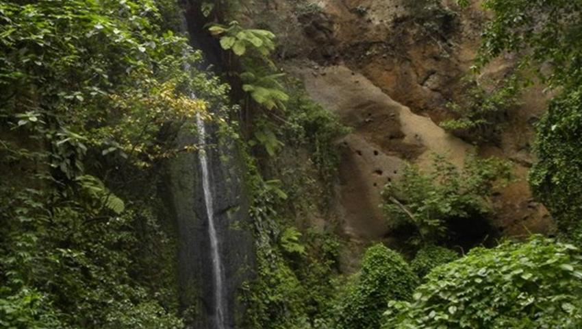 1, Reserva Natural de Chocoyero