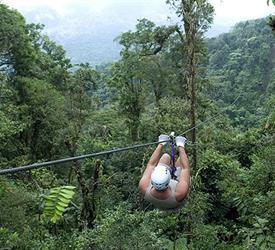 Fun Canopy Tour