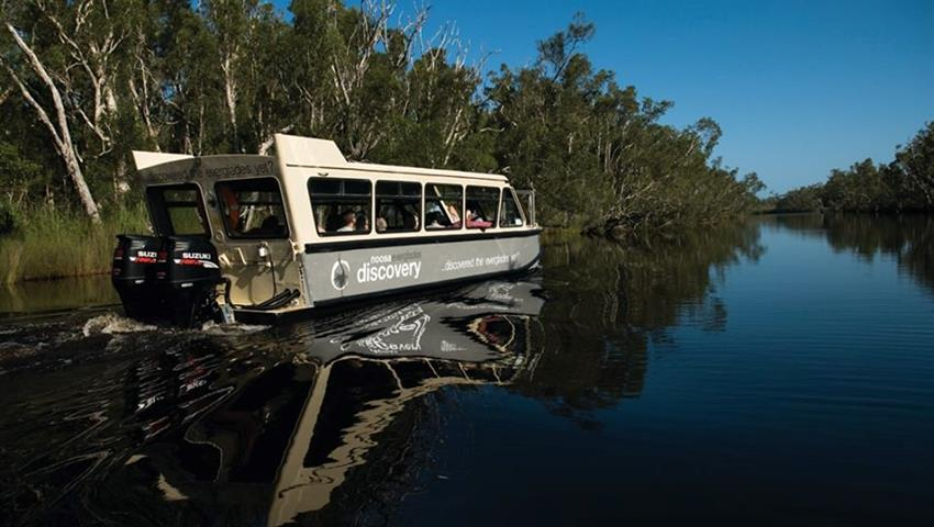 noosa river tiqy, Noosa Everglades Half Day Tour