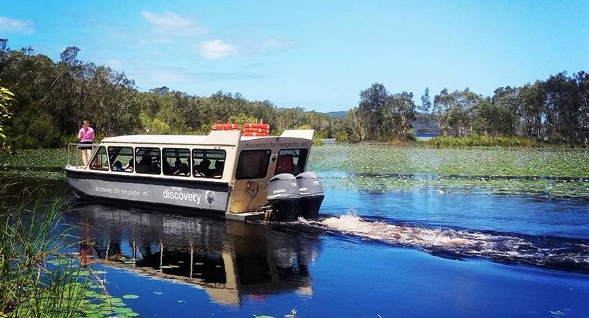 noosa river tiqy, Noosa Everglades Half Day Tour