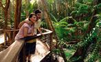 rainforest tiqy, One Day Experience Tour