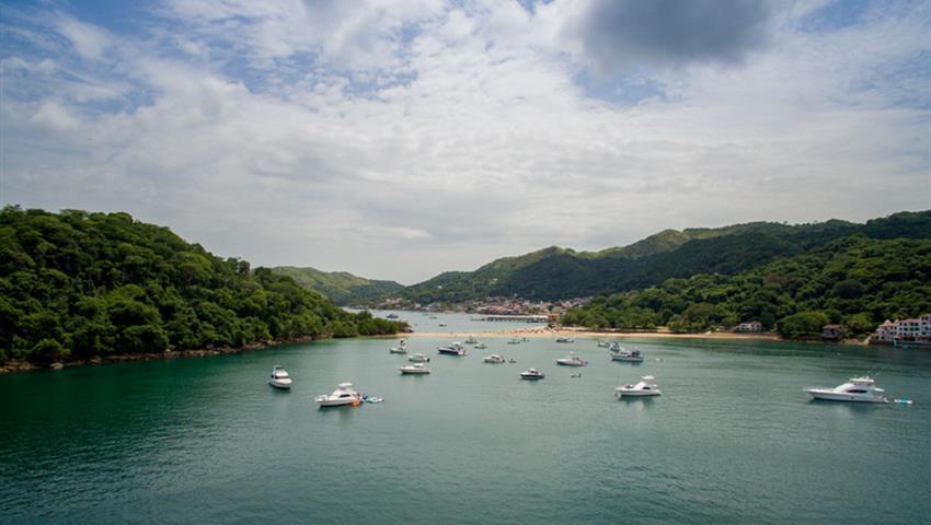 6, Catamaran All Inclusive to Taboga Island
