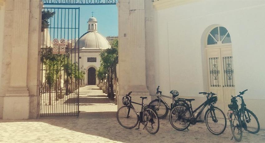 Malaga's Architecture, Tour Málaga Panorámica en Bicicleta