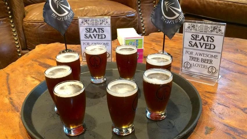Beer Tasting, Tour Patios y Pubs