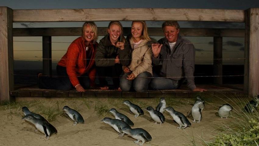 Phillip Island Tour persons, Phillip Island Tour