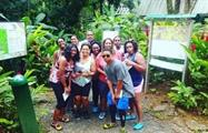 Yunque Rainforest and Bio Bay Group in Rainforest, El Yunque and Bio Bay Tour