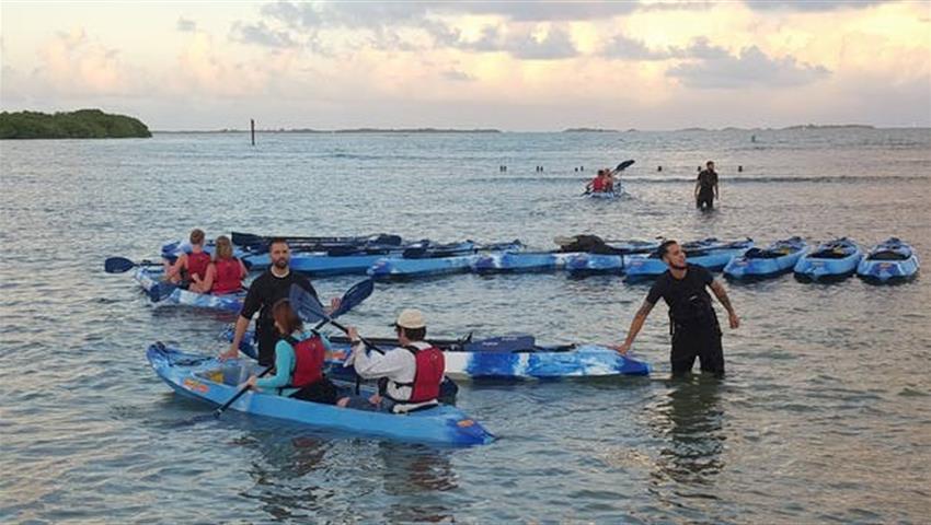 Yunque Rainforest and Bio Bay Guide, El Yunque and Bio Bay Tour