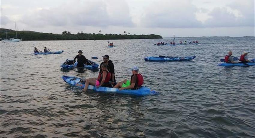 Yunque Rainforest and Bio Bay Couple, El Yunque and Bio Bay Tour