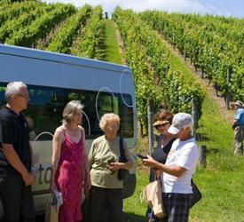 Premium Views, Vines and Wines