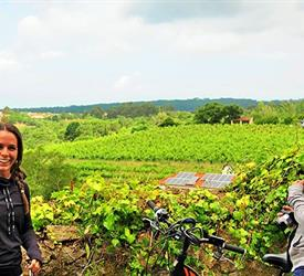 Private Wine Tasting E-Bike Tour, Tours On Wheels in Sintra, Portugal