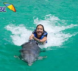 Tour de Delfines
