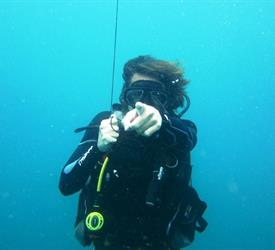Open Water Diver (Course)