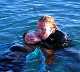 Rescue Diver (Course)