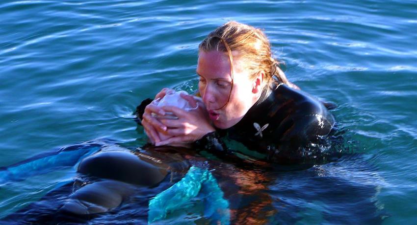 1, Rescue Diver (Course)