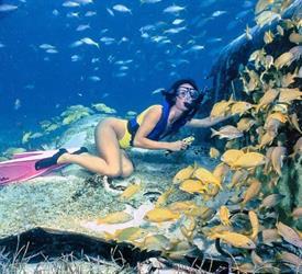 Tour de Snorkel en Punta Uva