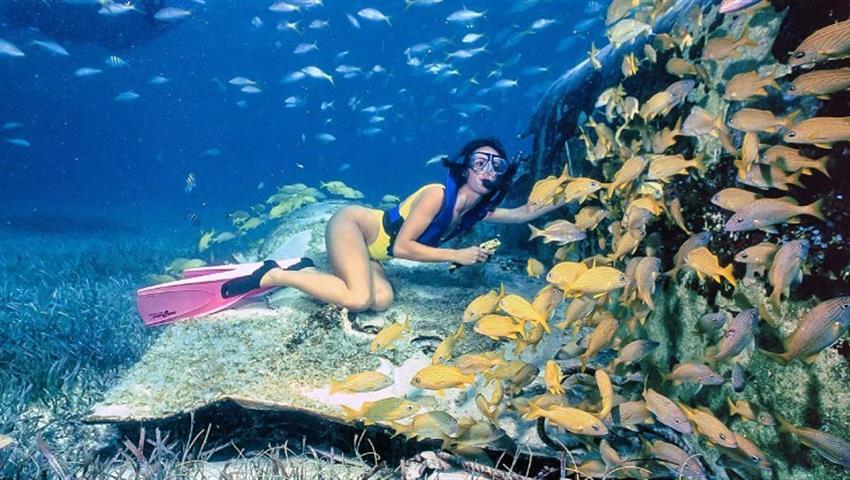 1, Snorkeling Tour in Punta Uva