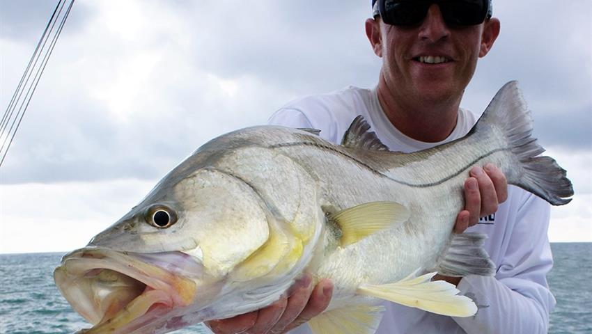 Fish, Quepos Sportfishing Full Day Tour