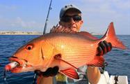 fish032, Quepos Sportfishing Full Day Tour