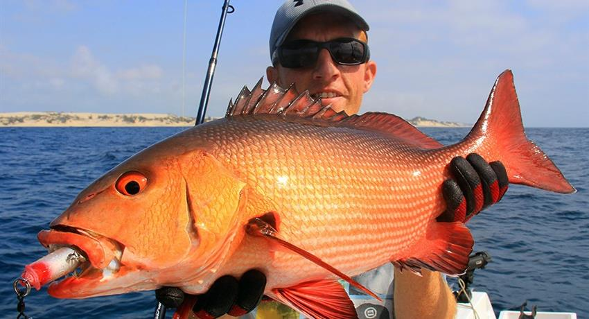fish032, Quepos Sportfishing Full Day Tour
