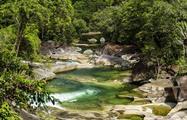Rainforest Tours Cairns Pierre Johne, Rainforest Tours Cairns