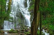 Waterfall, Rincon de la Vieja 8-Hour Adventure