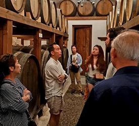 Tour de cata de Vinos de Santorini, Tours De Vino en Grecia