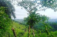 3, Scenic Route