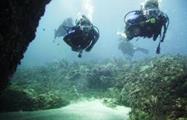 1, Dive the Caribbean