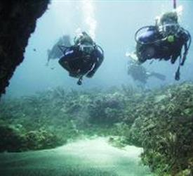 Dive the Caribbean