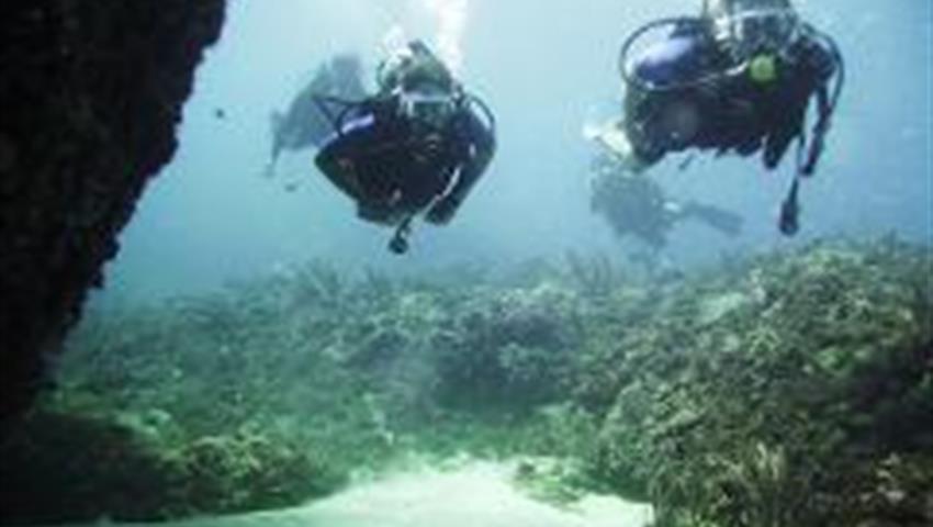 1, Buceo en Mar Caribe
