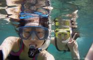 4, Tour de Snorkel en Portobelo