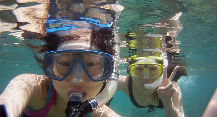 4, Portobelo Snorkeling Tour