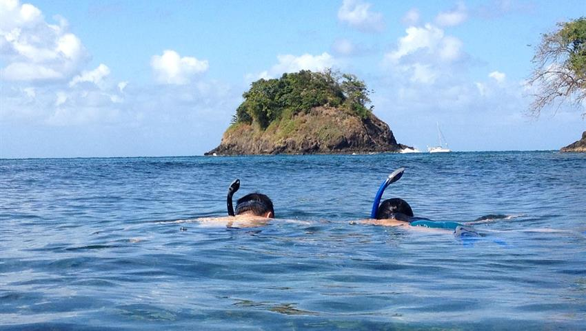5, Tour de Snorkel en Portobelo