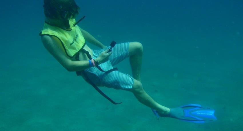 8, Portobelo Snorkeling Tour