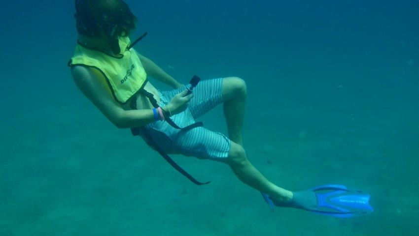 8, Tour de Snorkel en Portobelo