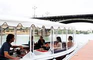 Cruise into Seville, Seville River Cruise & Walk