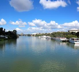Seville River Cruise & Walk, Boat Tours in Spain